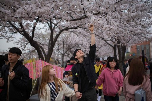 Du lịch Hàn Quốc vào tháng 3